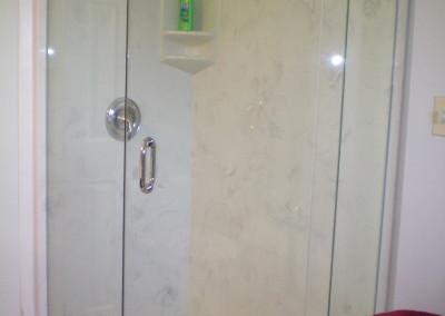 neo-angle-shower-with-fleurco-platinum-door