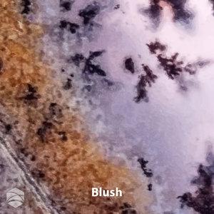 Blush_V2_12x12