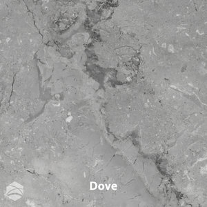 Dove_V2_12x12