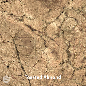 Toasted+Almond_V2_12x12